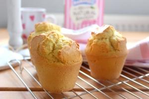 muffins natvia