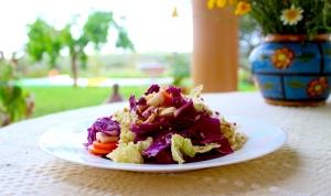 plated shredded salad